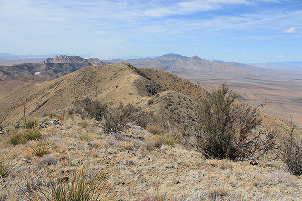 Bowie Mountain (L) and the distant Dos Cabezas Mountains (R) from Wood Mountain