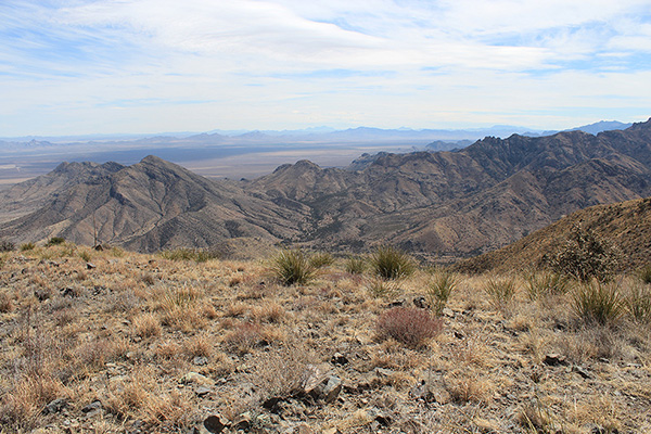 Several New Mexico Bootheel peaks rise to the southeast from the north summit of Wood Mountain