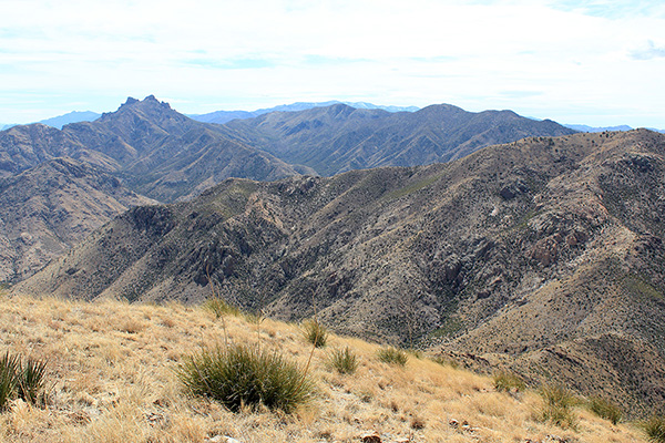 The Chiricahua Mountains from the south summit of Wood Mountain